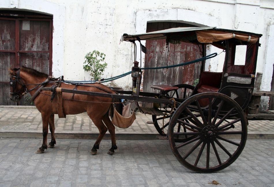 skogshästen - häst med vagn gammal