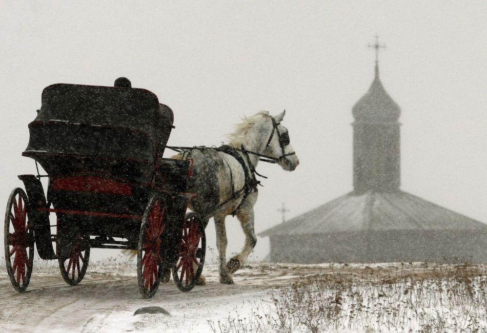 skogshästen - häst med vagn snö